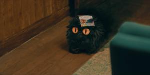 Le Petit Monstre menu pizzeria sur la tête