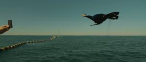 Drone observant femme sur bateau qui montre une carte